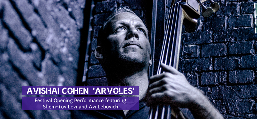 Avishai Cohen at the jazz festival Eilat